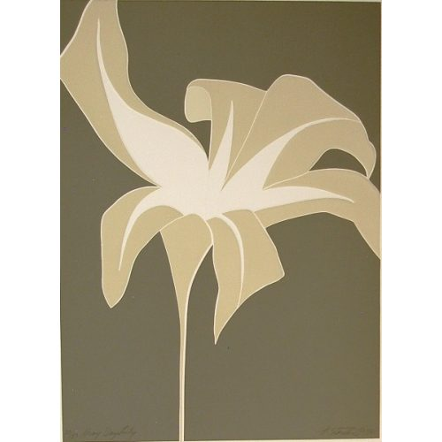 Gray Day Lily